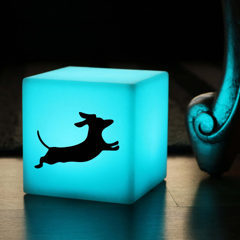 Hand Crafted Gift Lamp, Bedroom Ambient Cordless Night Light for Night Club, Cube , Dachshund Dog Gift Light