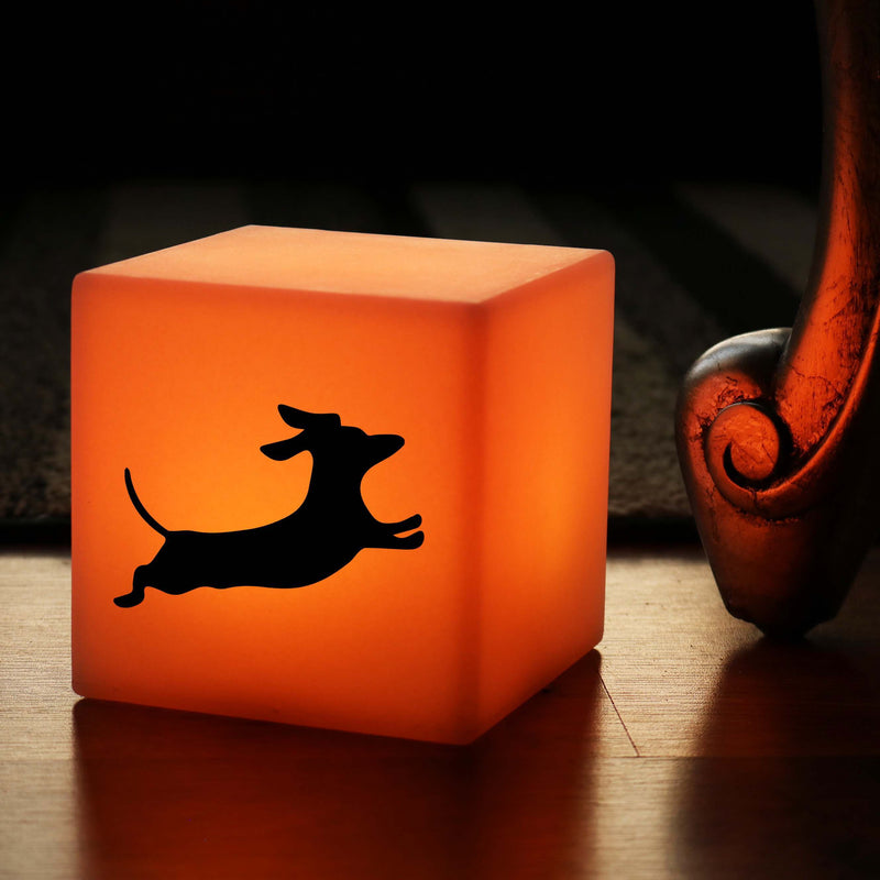 Hand Made Gift Lightbox, Bedroom Multi-Colour Battery Operated Table Lamp for Event, Cube , Dachshund Dog Gift Light