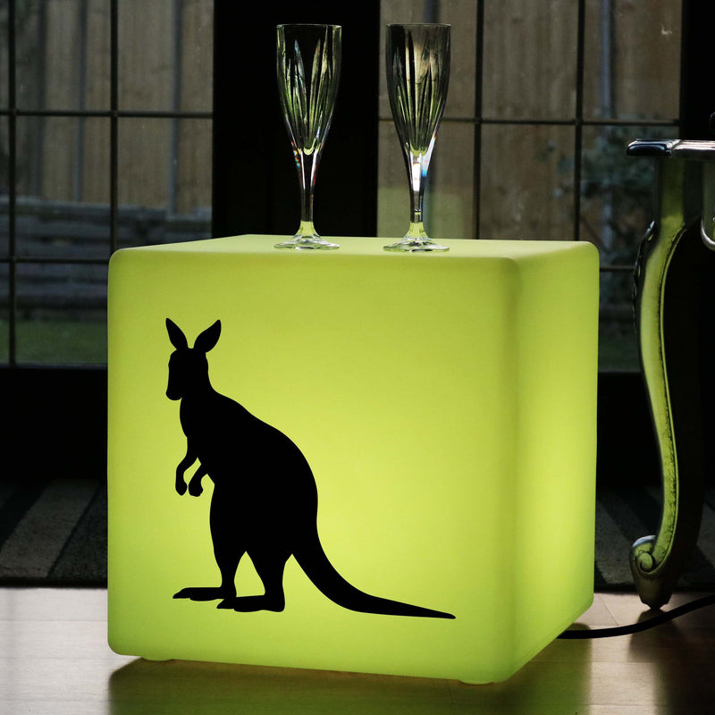 Original Gift Lightbox, LED Multi-Colour Light Up Stool for Wedding, Cube , Mains Powered, Kangaroo Light