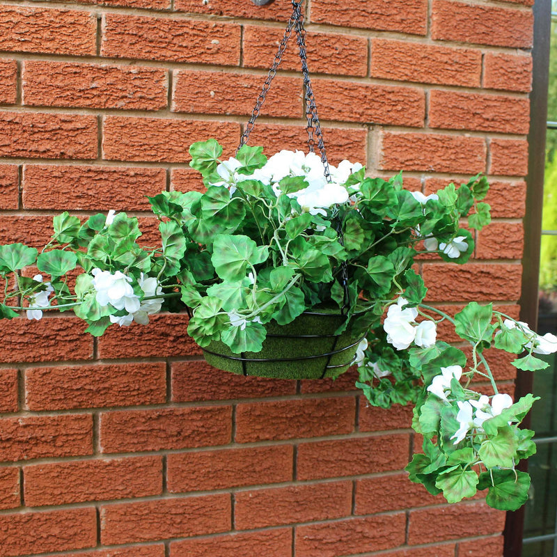 White geraniums hanging basket