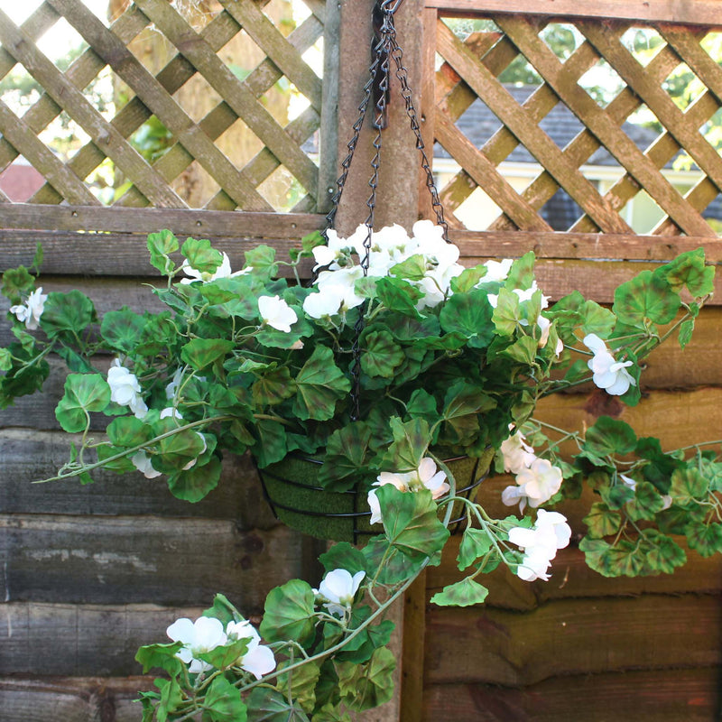 Geranium plant pot hanging from fence