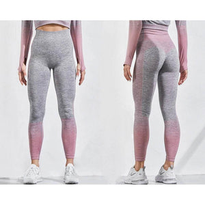 Performance Seamless Leggings - UltimateFitGears