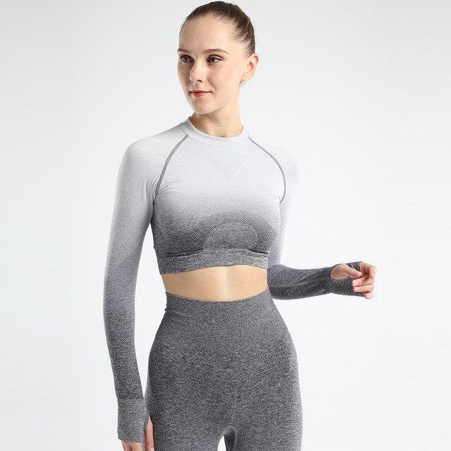 Ombre Seamless Long Sleeve Crop Top - UltimateFitGears