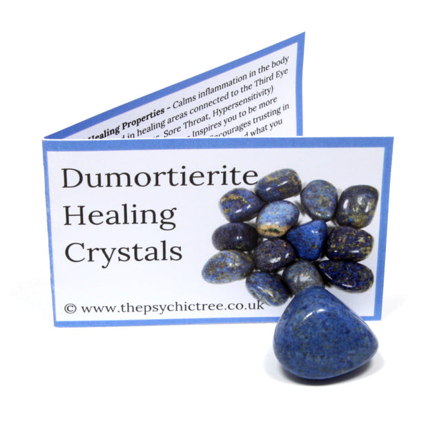 Dumortierite Crystal & Guide Pack