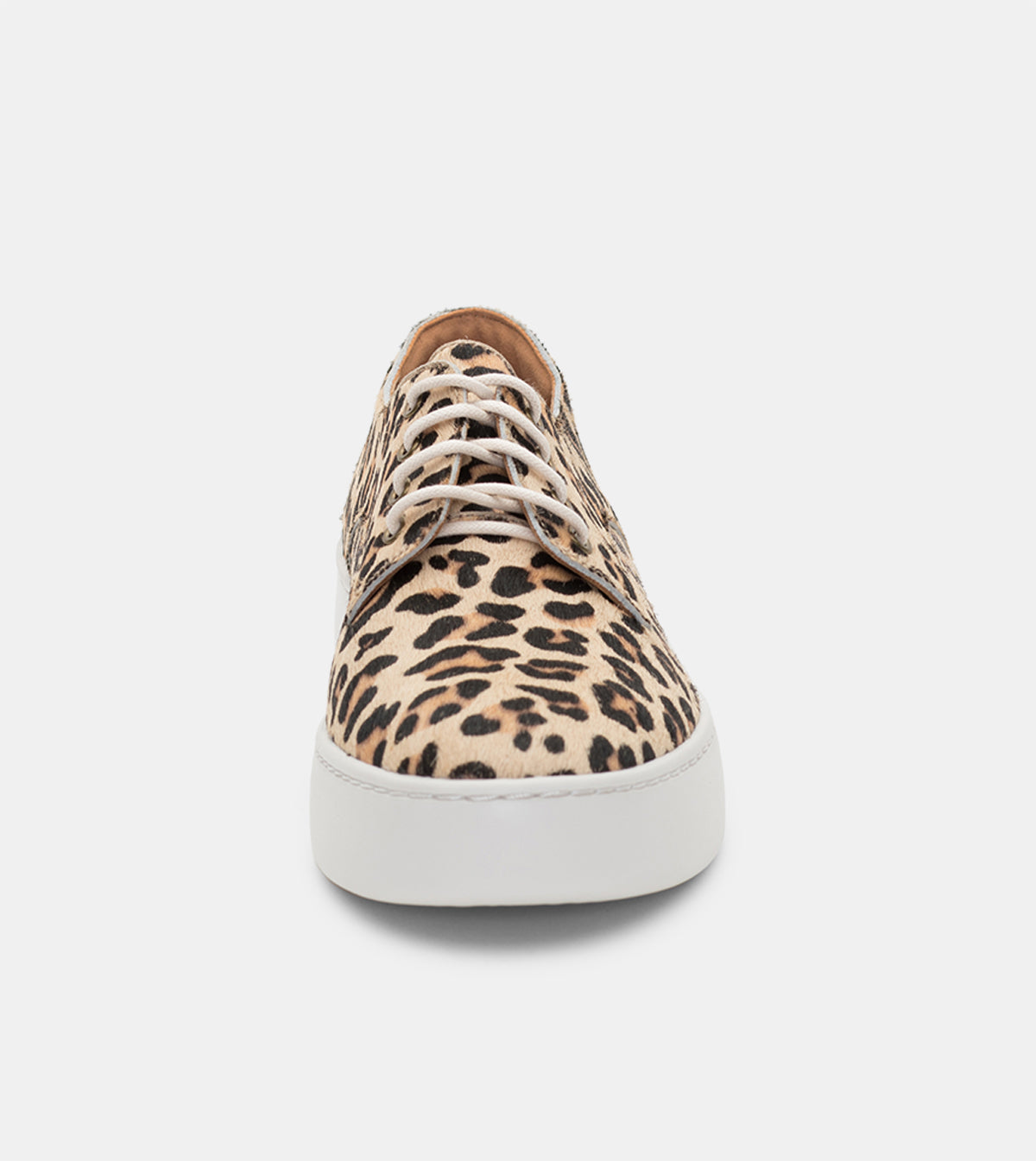 Derby City Camel Leopard