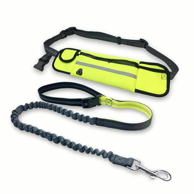 Handfree Bungee Dog Leash with Multifunction Waterproof Pockets