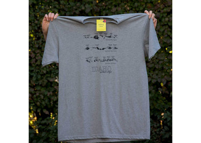 Ladybug Press Idaho Mountain Ranges T-Shirt - Idaho Mountain Touring