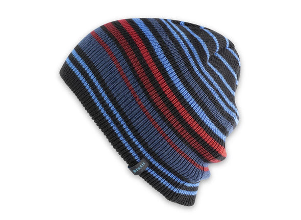 Pistil Men's Gordy Beanie - Idaho Mountain Touring