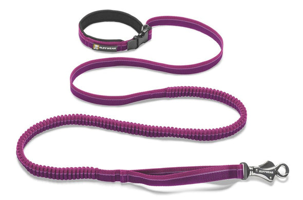 Roamer Leash - Idaho Mountain Touring