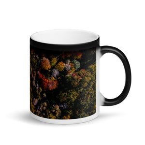 Michigan Fall Colors - Matte Black Magic Mug