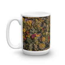 Load image into Gallery viewer, Michigan Fall Colors - Mug