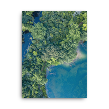 Load image into Gallery viewer, Michigan Summer Treetops - Canvas