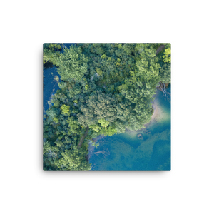 Michigan Summer Treetops - Canvas