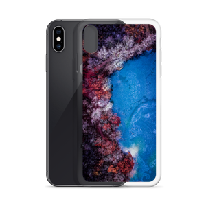 Fall Leaves Winter Ice - iPhone Case