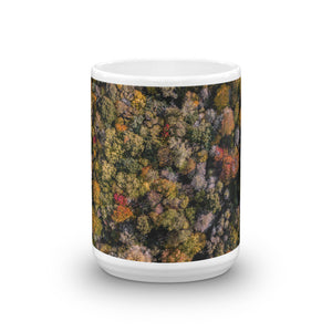 Michigan Fall Colors - Mug
