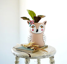 Load image into Gallery viewer, Old Blue Owl Clock & Planter