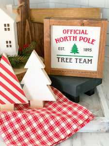 Official North Pole Team