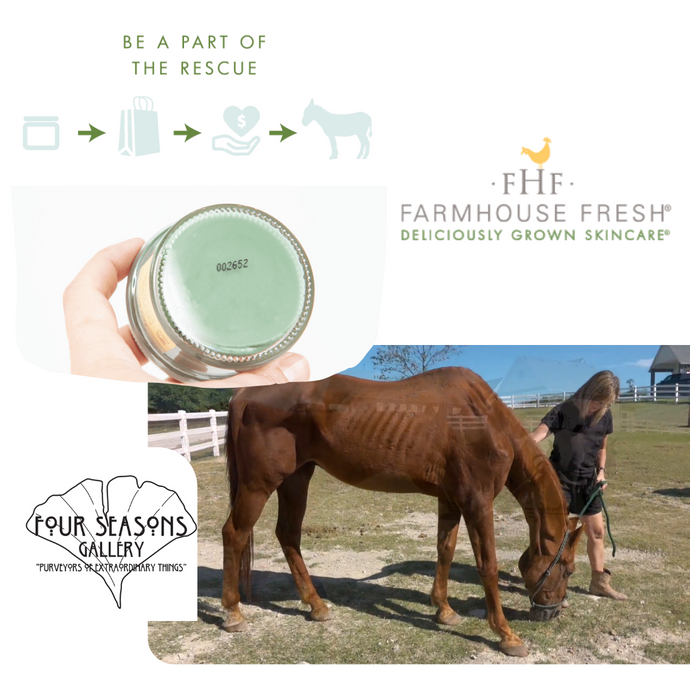 3 HORSES SAVED - RESCUED BECAUSE OF YOUR FARMHOUSE FRESH PURCHASE!