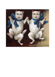 Dancing White Cats