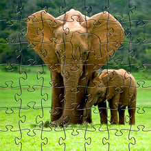 Load image into Gallery viewer, Zen Puzzles - Elephants