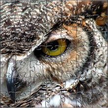 Load image into Gallery viewer, Zen Puzzles - Great Horned Owl Teaser