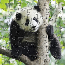 Load image into Gallery viewer, Zen Puzzles - Panda