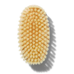 Cuerpo - Body Brush Medium No. 2