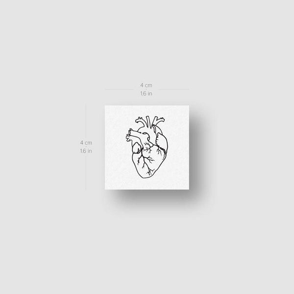 Anatomical Heart Temporary Tattoo - Set of 3