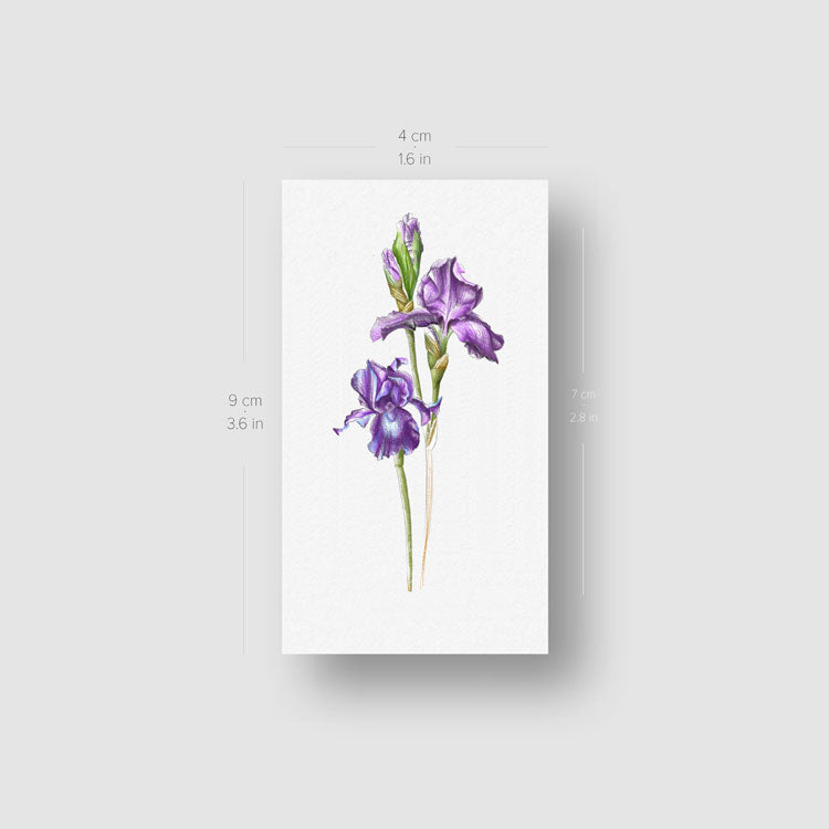 Illustrative Iris Temporary Tattoo - Set of 3