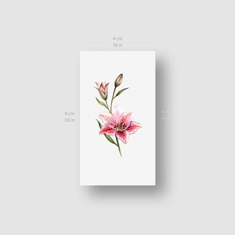 Lily Stargazer Temporary Tattoo - Set of 3