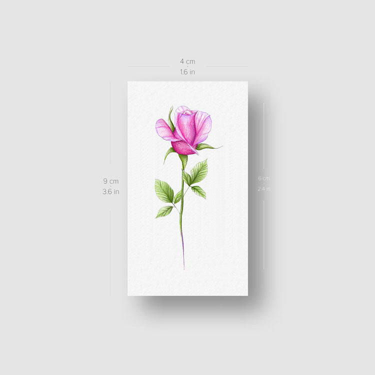 Illustrative Pink Rose Temporary Tattoo - Set of 3
