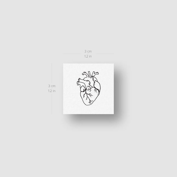 Small Anatomical Heart Temporary Tattoo - Set of 3