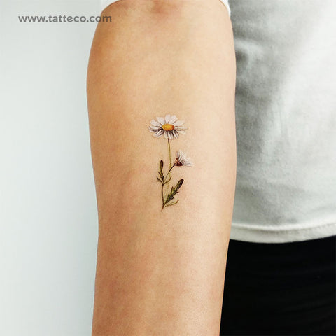Watercolor Daisy Temporary Tattoo - Set of 3