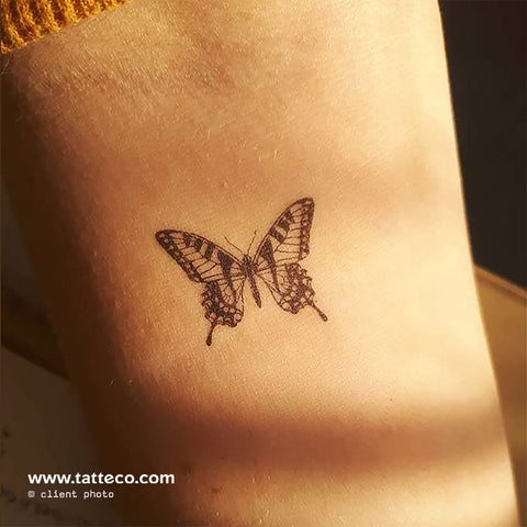 Tiger Butterfly Temporary Tattoo - Set of 3