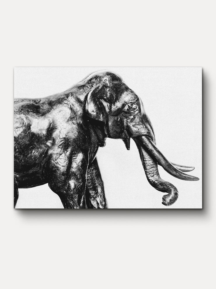 Black and White Elephant Animal Unfamed Canvas Wall Art - iFul