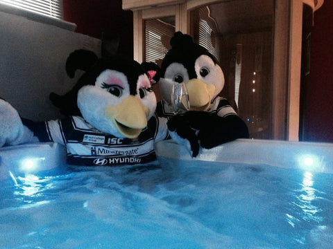 Airlie and Girlie Bird, Hull FC mascots in Hot Tub