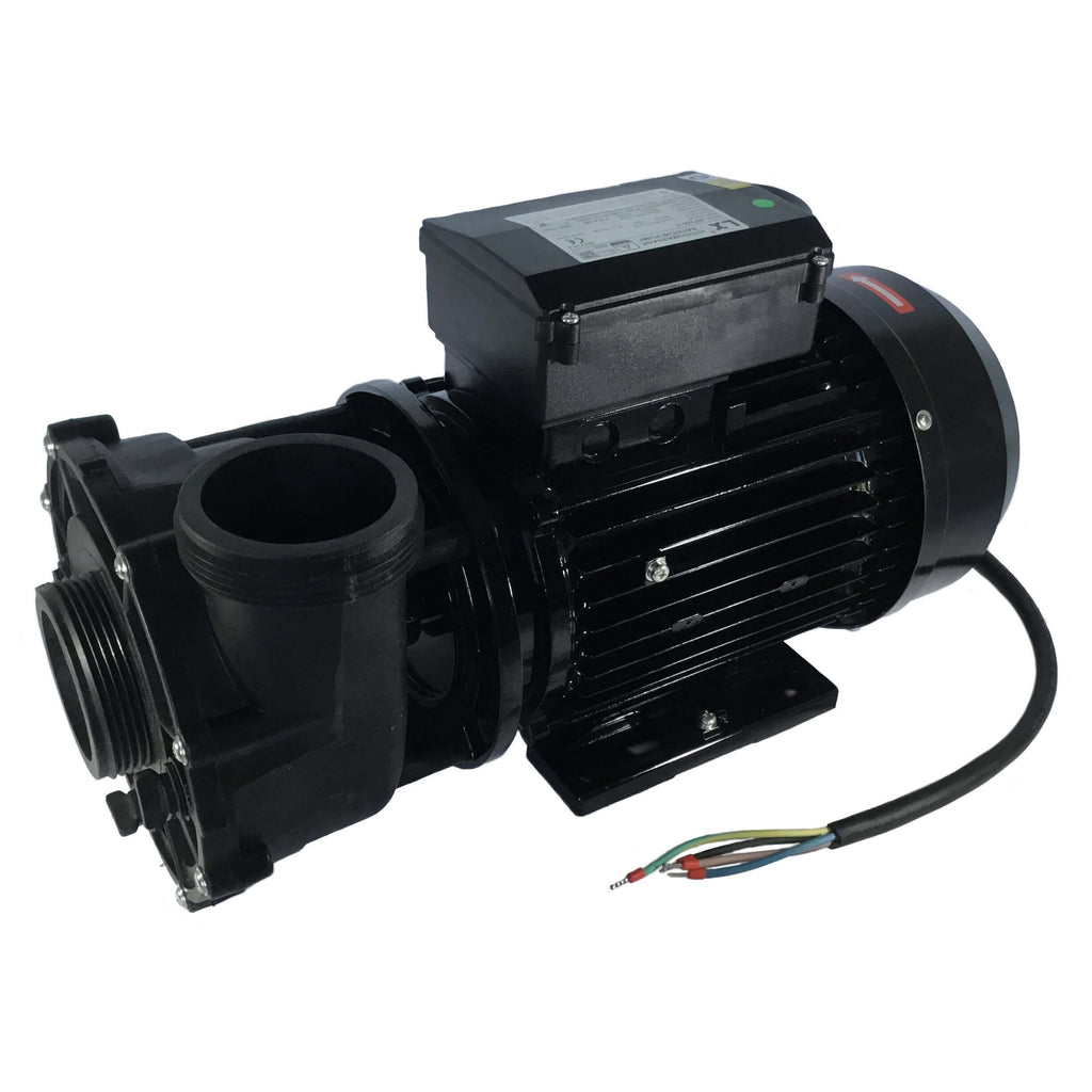 Jacuzzi® Lodge 2 Speed Pump. Part No. 930108653