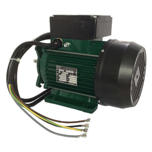 Arctic Spa Pump EMG 2 Speed (Wet End Not Included). Part No. PAK-113096