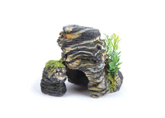 Kazoo Granite Rock With Plant