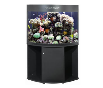 Oceanson C800 - 80cm Curved Front Corner Aquarium with Back Filter & Cabinet