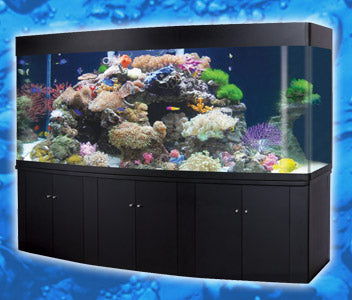 Oceanson RM250 - 250cm Aquarium with Curved Front & Cabinet with sump (Black)