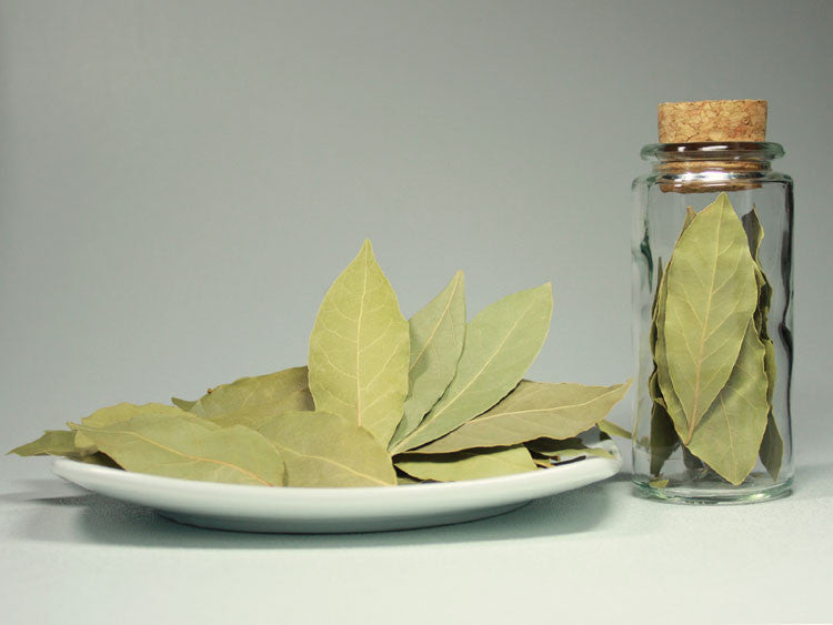 Bay Leaf - Whole - Sullivan Street Tea & Spice Company