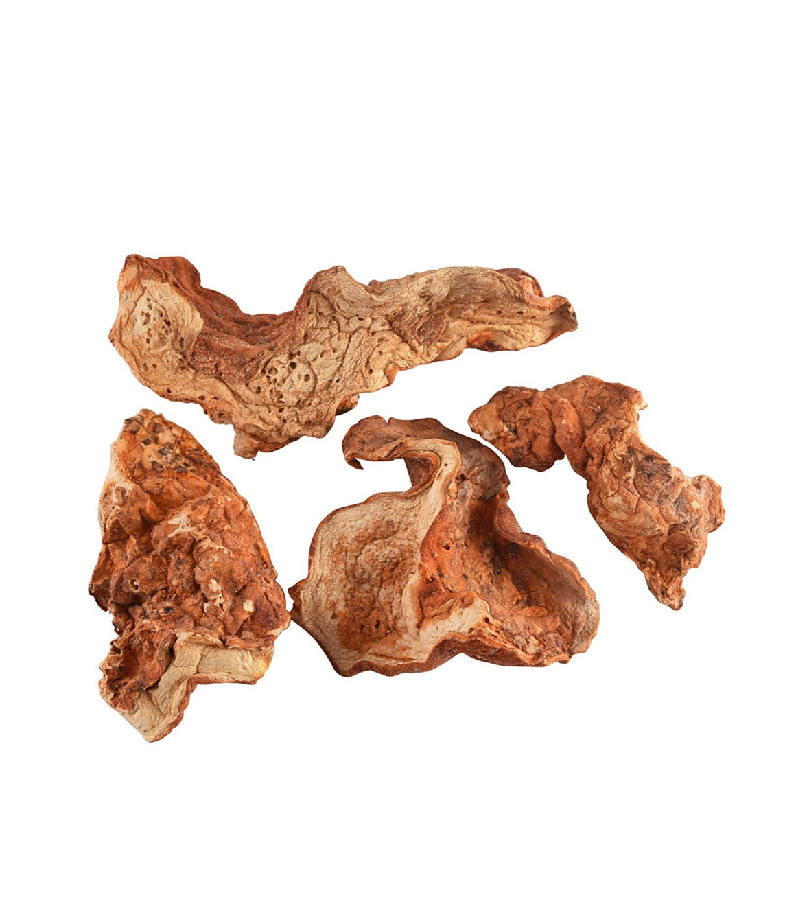 Wild Lobster Mushrooms - Sullivan Street Tea & Spice Company