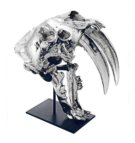 Nickel Sabertooth Skull