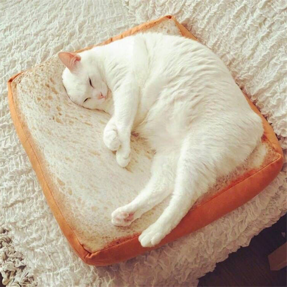 Bread Slice Cat Pillow