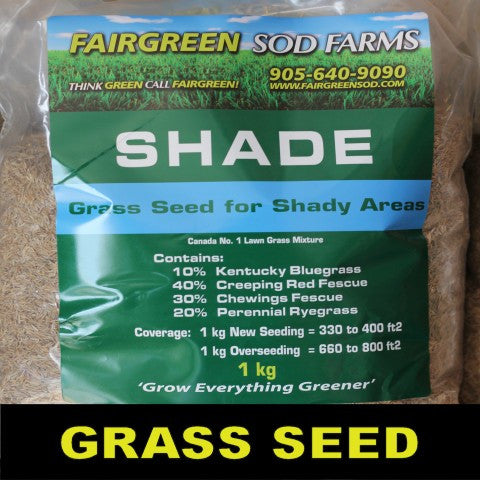 Shade Grass Seed