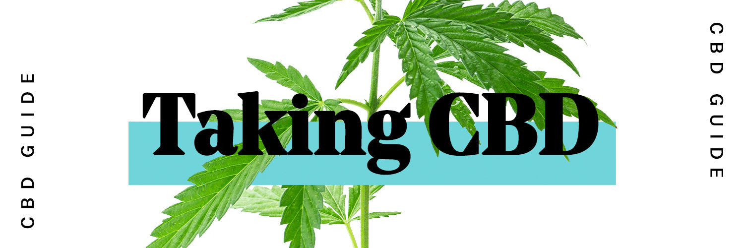 Taking CBD - The ultimate beginners guide to CBD