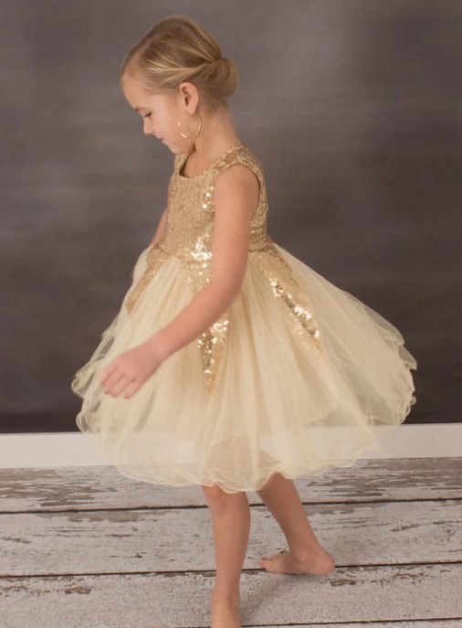 [Little Delia]Bling Champagne Flower Girl Dress Prom Dress Birthday Party Dress