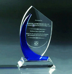 WCT-09 Crystal Trophy Worldwide Delivery Award - winningway