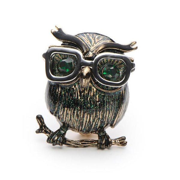 Cute and Wise Owl Brooches